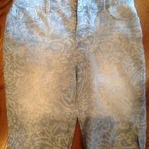 Bandolino Blue Faded Shorts Size 6 Photo