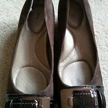 Bandolino Dark Brown Suede Ballet Flat W/buckle Women's 7.5m Photo