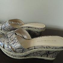 Bandolino 'Dbgraphic' Women's Snakeskin Print Wedge slides.size 6m Photo