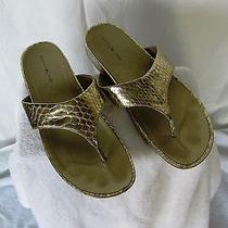 Bandolino Piano Gold Reptile Snakeskin  Embossed Slide Sandal Shoes Sz 10 Photo