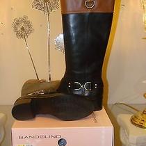 Bandolino Riding Boot  (Price Reduced) Photo