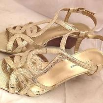 Bandolino Rodger Womens Size 6 Gold Textile Wedge Sandals New/display Pair Photo