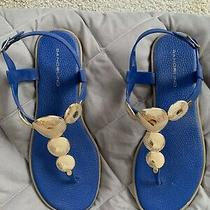 Bandolino Sandals Blue With Gold Circles Size 9m Casual Flat Sandal Photo