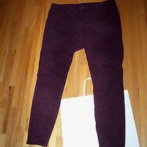 Bandolino Womens Burgundy Wine Jeans 14w Photo