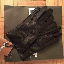 Barbour Leather Gloves Photo