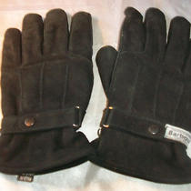Barbour Mens Medium M Black Leather Thisulate Riding Gloves Photo
