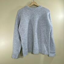 Basic Elements Mens Size Large Light Gray Shetland Wool Pullover Sweater Photo