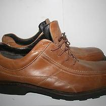 Bass Burton Brown Leather Shoes Men's Size 13m Us Stk B  Photo