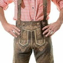 Bavarian Oktoberfest Shorts Lederhosen Lamb Antique Leather Tracht Jodler  Photo