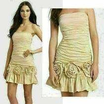 Bcbg Bcbgmaxazria Dress Ruched Strapless Rosette 398 Nwt Sz 6 Photo