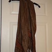 Bcbg Brown Scarf  Photo