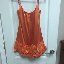 Bcbg Dress Photo