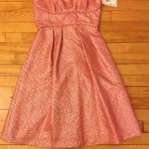 Bcbg Dress Size 8 Photo