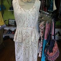 Bcbg Lace Peplum Dress Photo