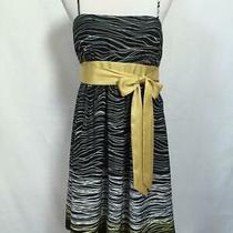 Bcbg Max and Cleo Dress Size 12 Black White Yellow Striped a-Line Tie Waist New Photo