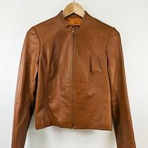 Bcbg Max Azria Brown Leather Cafe Racer Bomber Jacket Sz 2 Photo