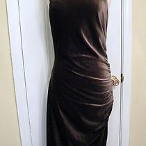 Bcbg Maxazria Dress Mahogany Brown Stretch Velvet Washable New Medium  Photo