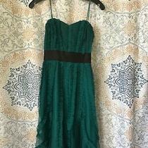 Bcbg Maxazria Strapless Dress  Photo