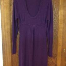 Bcbg Maxazria Sweater Dress Medium Photo
