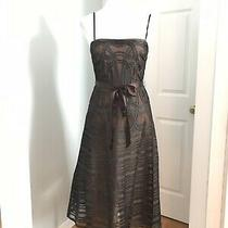Bcbg Maxazria Womens Size 2 Brown Tulle & Ribbon Dress (P12) Photo