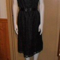 Bcbg Paris Women's Black Lace Party/cocktail Dress Size 12 Photo