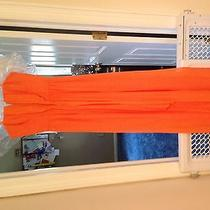 Bcbg Prom Dresssize 0 Photo