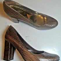 Bcbgirls Bcbg Calista Brown Leather Croc Pumps Heels Shoes Size 7  Closet Photo