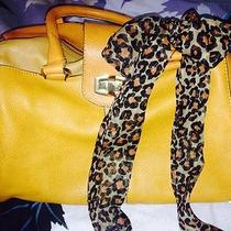 Beautiful Aldo Hand Bag Photo
