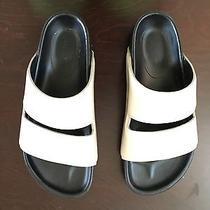 Beautiful Celine Shoes Photo