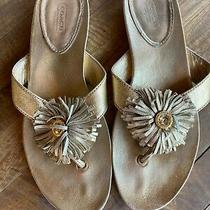 Beautiful Coach Sandals - Size 9 - Gold Flower Leather Sandals Photo