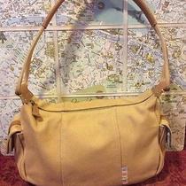 Beautiful Crunchy Natural Taupe Fossil Handbag So Beautiful Photo