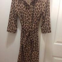 Beautiful Express Cheetah Print Outerwear Photo