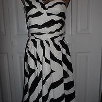 Beautiful Express One Shoulder Black White Dress Ladies Women Size 8 Nwt Photo