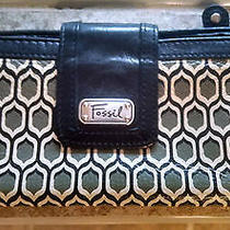 Beautiful Fossil Wallet Photo