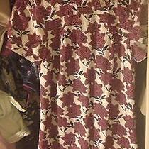 Beautiful Hardly Worn Fossil Dress Photo