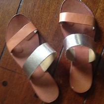 Beautiful Joie Sandals Photo
