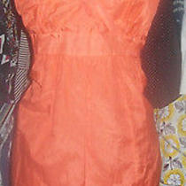 Beautiful Kensie Dress Size Large Photo