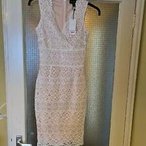 Beautiful Lipsy Blush Cross Front  Lace Dress Size 4 New With Tags  Photo