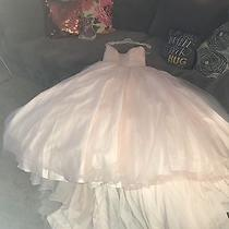 Beautiful Never Been Worn Blush Strapless Tulle Skirt Wedding Gown Nwt Photo