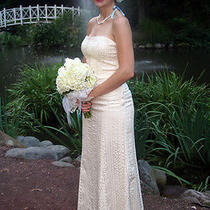 Beautiful Nicole Miller Wedding Dress  Size 2 W/ Matching Shawl Photo