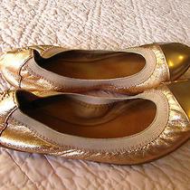Beautiful Rose Gold Coach Ballet Flats for Summer Size 5 - Beautiful Photo