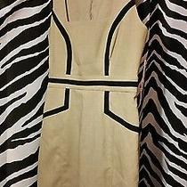 Beautiful Tan and Black Professional Dress Photo