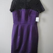 Beautiful Trina Turk  Dress Sz 8 298 Photo