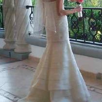 Beautiful Vera Wang 2g119 Baby Callalily Wedding Dress Veil and Sash - Size 2 Photo