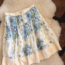 Beautiful Zara Basic Lace Skirt  Photo