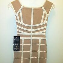 Bebe Bandage Dress Brand New Size Xs Photo