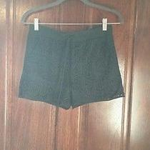 Bebe Black Lace Short Photo