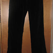 Bebe Black Stretch Smooth Velvet Boot Cut Pants Sz. 4 Euc Photo