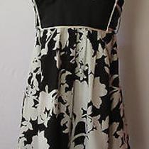 Bebe Black/white Dress Size M Photo