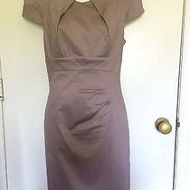 Bebe Coffee Brown Medium Women Dress Photo
